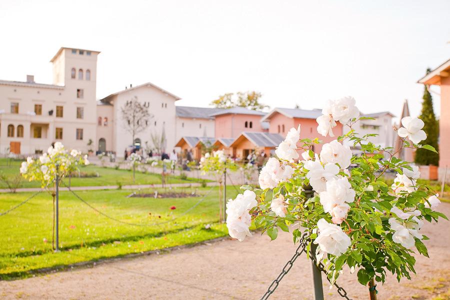 Hochzeitsfeier Am Wasser Potsdam Archives Hochzeitsfotograf Berlin